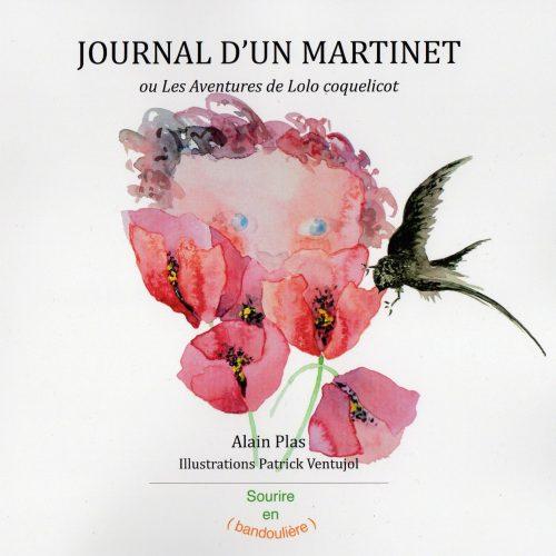 Journal d'un Martinet
